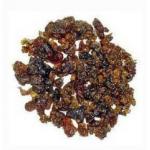 Star Cardio health capsule (Curcuma longa, Aloe vera, Zingiber officinale, Emblica officinalis, Terminalia belerica, Terminalia chebula, Piper nigrum and Commiphora mukul)